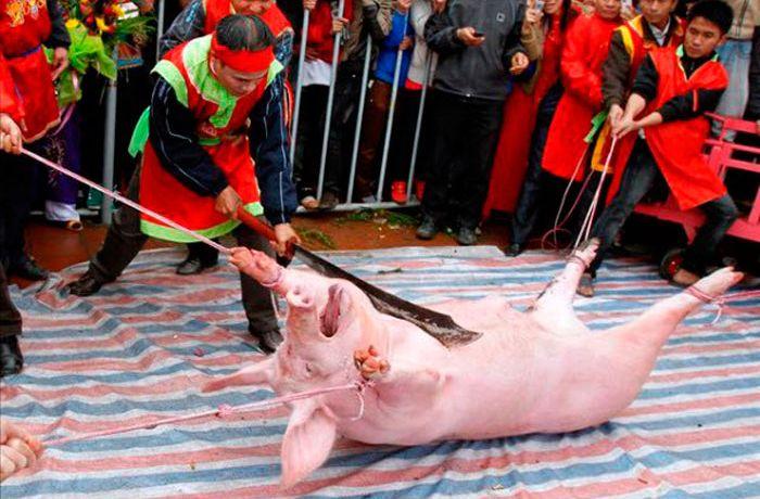 Разрубить свинью пополам