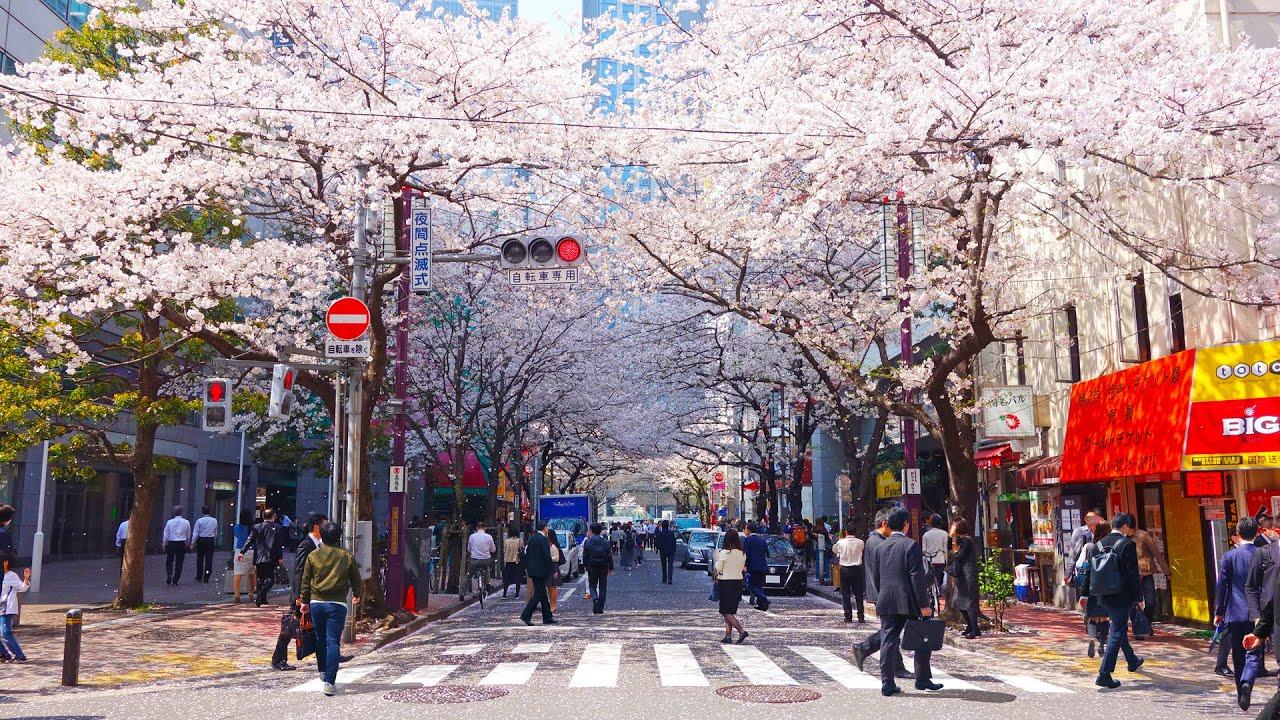 Какую технику взять с собой в Японию